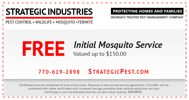 initial mosquito service 2016